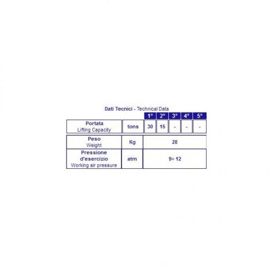 Sollevatore oleopneumatico
